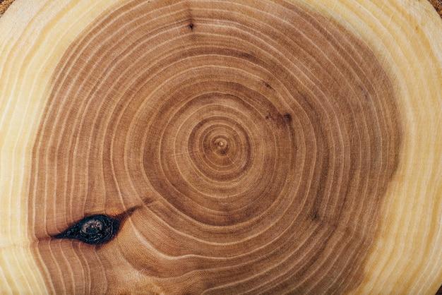 Текстура деревянной плиты ясеня с годичными кольцами, таблицей или обоями.