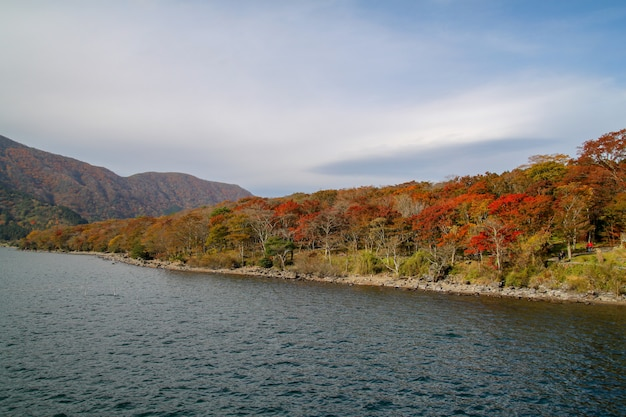 Взгляд ландшафта горы и леса изменяет лист цвета на озере ashi в сезоне осени японии