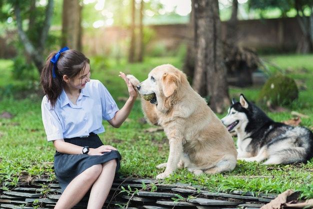 Asia girl wearing uniform playing with a golden retriver