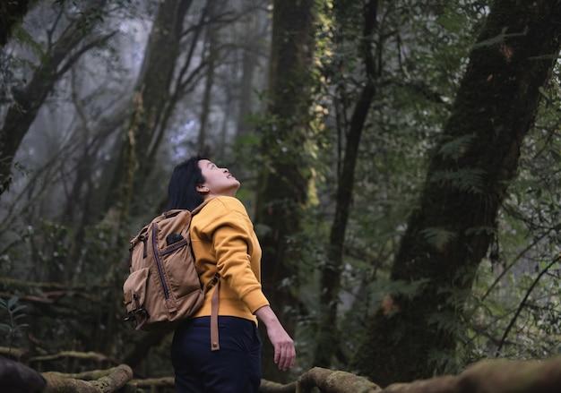 숲 자연 흔적에서보기를보고 아시아 배낭