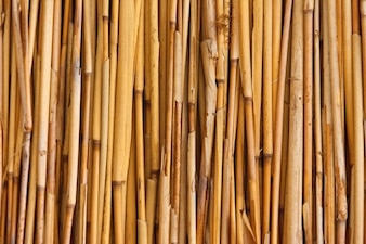 Asian bamboo background fence abstract bunch