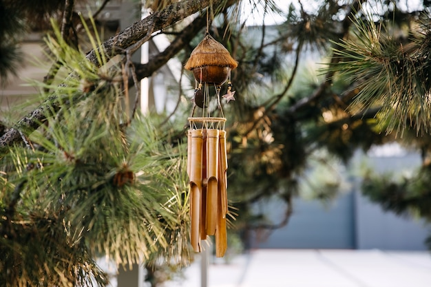Asian bamboo musical chime hanged on a tree
