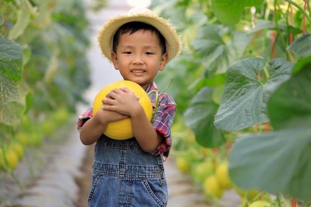 Азиатский мальчик и золотая дыня в органической оранжерее
