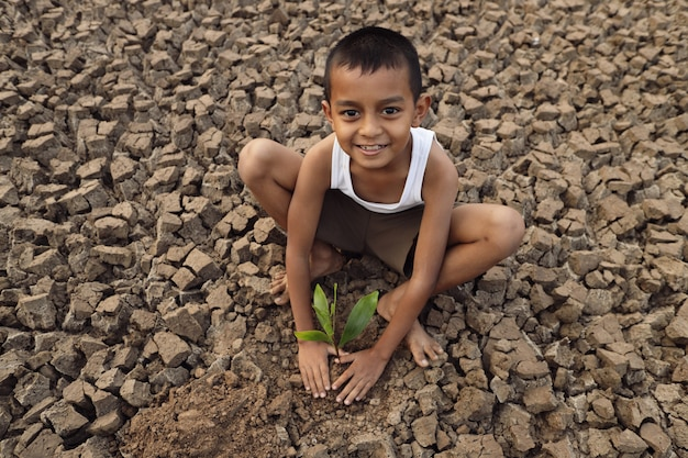 An asian boy is trying to grow a tree on a barren and cracked ground.