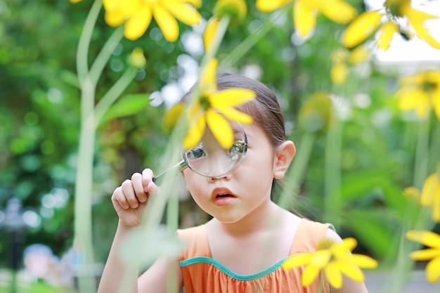 Asian child girl explorer beautiful blossom yellow flowers in summer garden.
