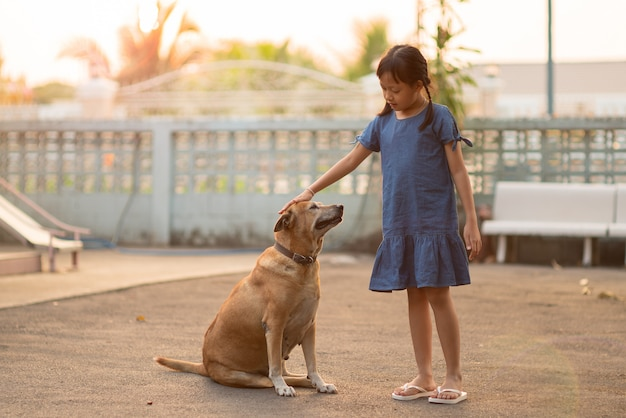 Asian child girl stroking a dog at home with kind and love