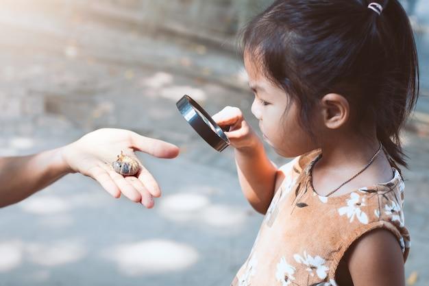 Азиатская девочка-девочка использует увеличительное стекло и учиться на жука-носорога l