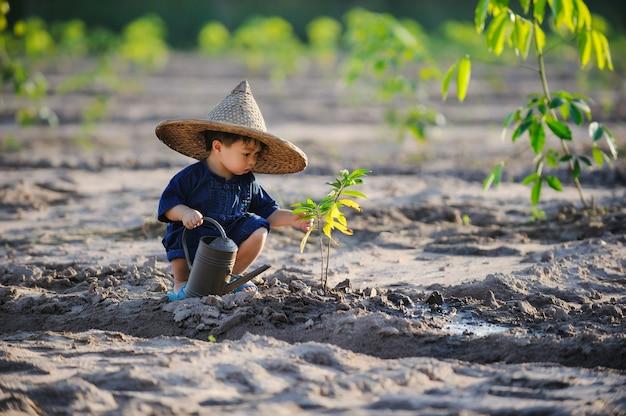 아시아 아이 식물 그레이 트리 봄 개념 자연과 관리