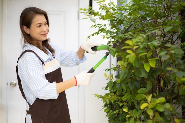 Азиатская милая домохозяйка в фартуке с помощью секаторов подрезает ветви и листья небольшого дерева на заднем дворе дома и счастлива для хобби.