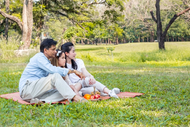 Asian family on a picnic