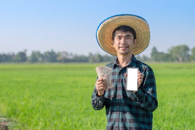 Asian farmer man holding thai banknote money and smartphone with smile face at green rice farm