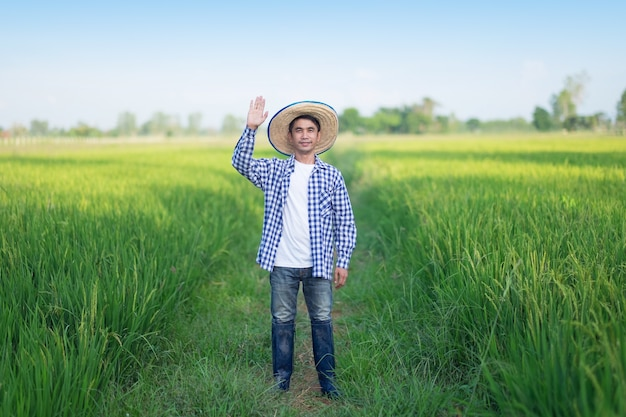 Asian farmer man raise up one hand and smile standing at a green rice farm