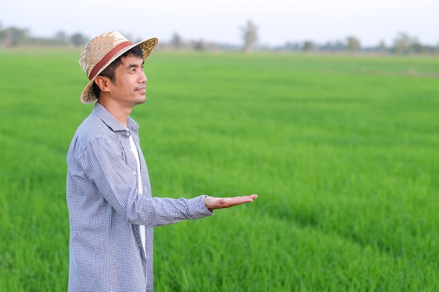 Asian farmer man standing and raise hand to the side for present product at rice farm