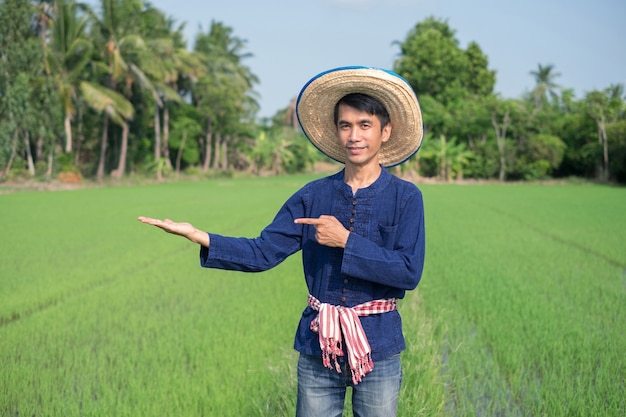 Asian farmer man wears traditional costume standing and raised up a hand at green rice farm. image for presentation.