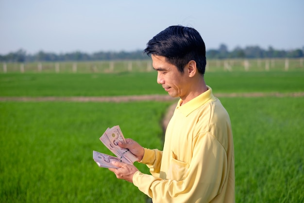 Asian farmer man wears yellow shirt counting thai banknote money on hand at green rice farm.
