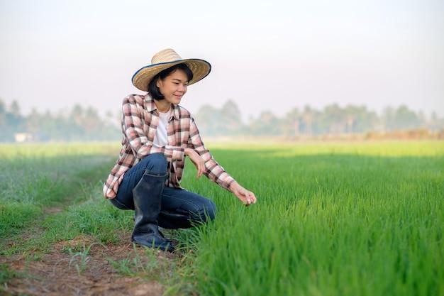 緑の稲作農場に座っている帽子とアジアの農家の女性