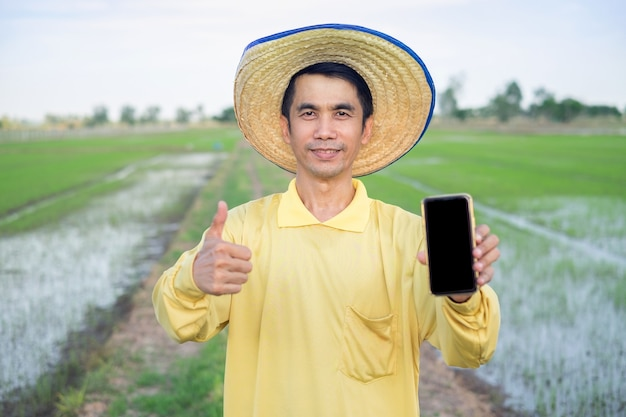 Asian farmers wear yellow shirts holding smartphone and thumb up at the green farm.