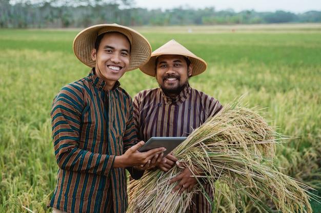 田んぼに帽子をかぶったアジアの農家