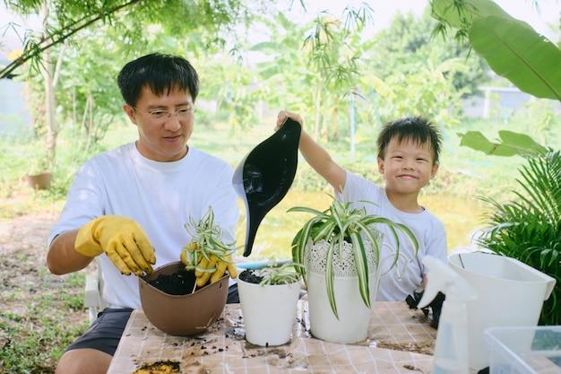 裏庭で男の子の子供を植えるクモの計画を教えるアジアの父お父さんと息子が一緒にガーデニング