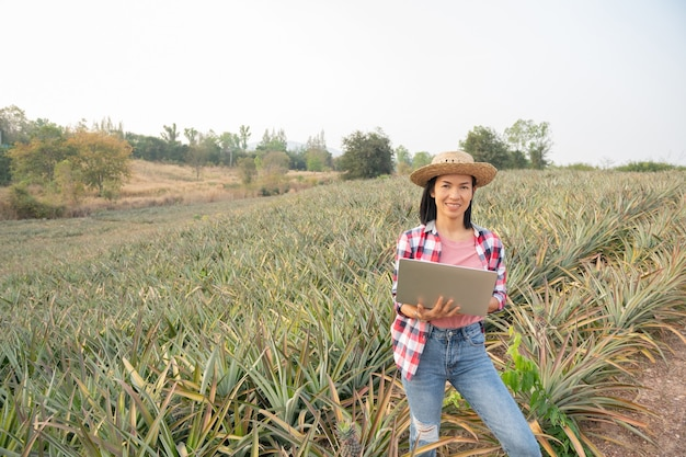 Asian female farmer see growth of pineapple in farm, agricultural industry, agriculture business concept.