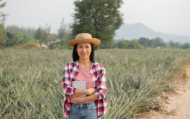 Asian female farmer see growth of pineapple in farm. agricultural industry, agriculture business concept.