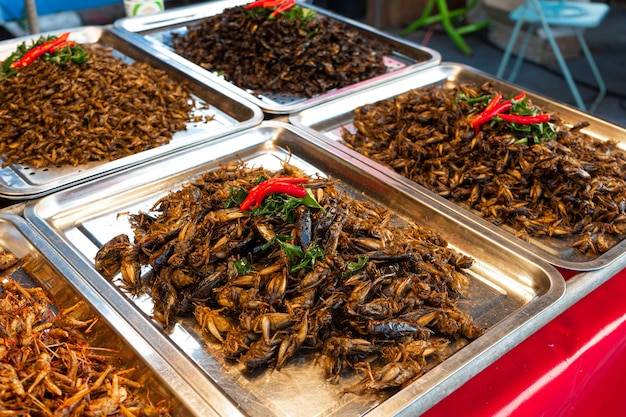 아시아 식품 시장 곤충 튀김 카운터
