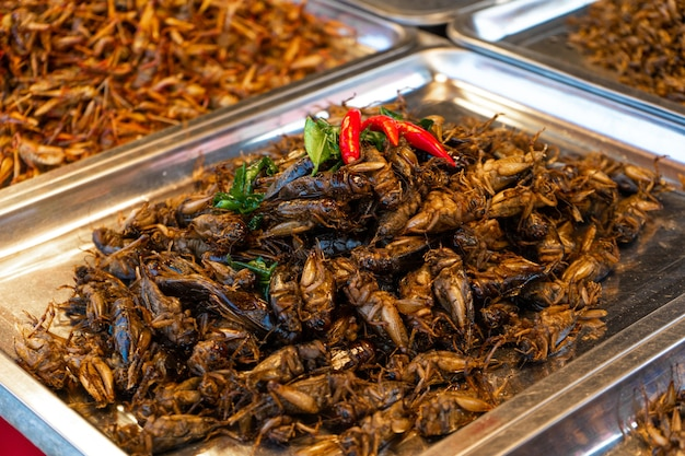 Asian food market a counter with fried insects