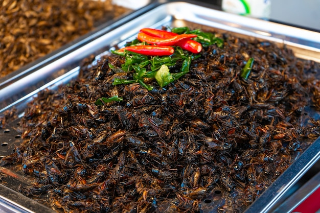 Asian food market. a counter with fried insects