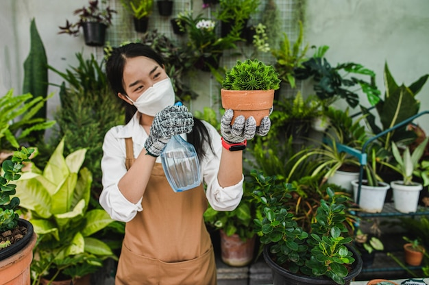 Asian gardener woman wearing face mask and apron holding spray to watering green houseplant in hand