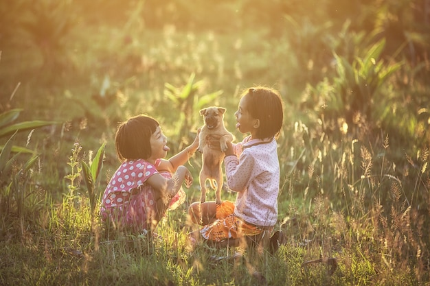Asian kid girls playing with dog in the park under sunlight