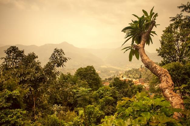 Азиатский пейзаж. естественный фон