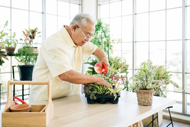 은퇴한 아시아 남성 노인은 실내 정원에서 안개가 자욱한 식물에 물을 뿌려 식물을 돌보는 것을 좋아합니다. 은퇴 활동을 즐기십시오.