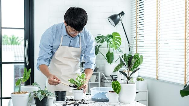 삽을 사용하여 식물을 새 화분에 이식하고 취미 활동을 하는 동안 집에서 식물을 돌보는 아시아 남자 정원사, 가정 정원 개념