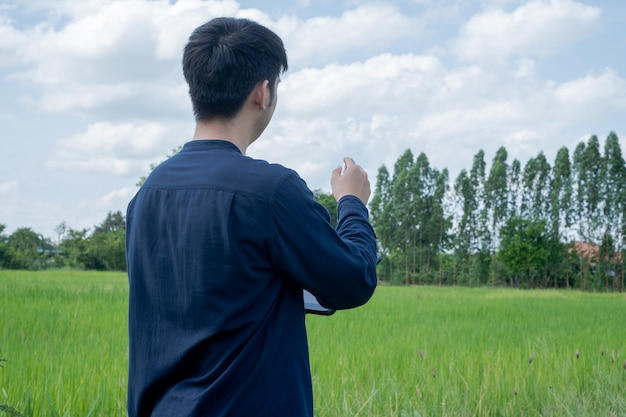 Asian man using tablet at the green rice field. use technology in the farm concept.