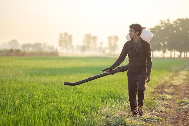 An asian man wearing a dark shirt with a sprayer is walking in a field spraying chemical fertilizer.
