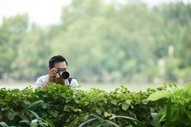 Asian man with professional camera peering over green hedge in park and taking photos