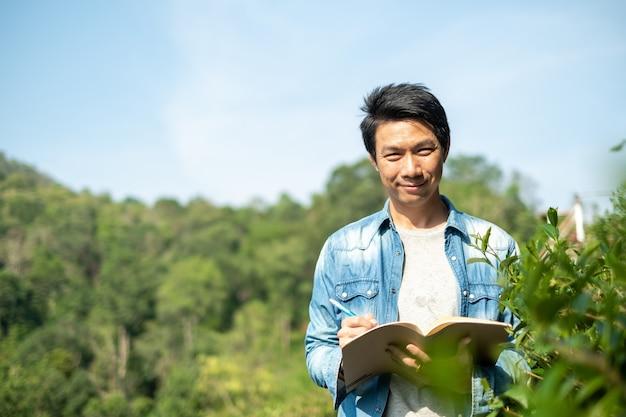 Asian man working in green tea plantation in chiang-mai thailand,