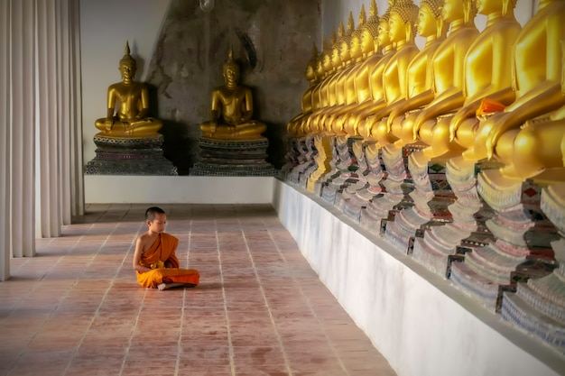 Asian monk neophyte sitting meditation in temple ayutthaya, thailand.