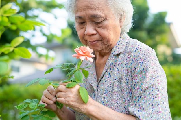 日当たりの良い庭でピンクがかったオレンジ色のバラの花を持つアジアのシニアまたは高齢の老婦人女性。