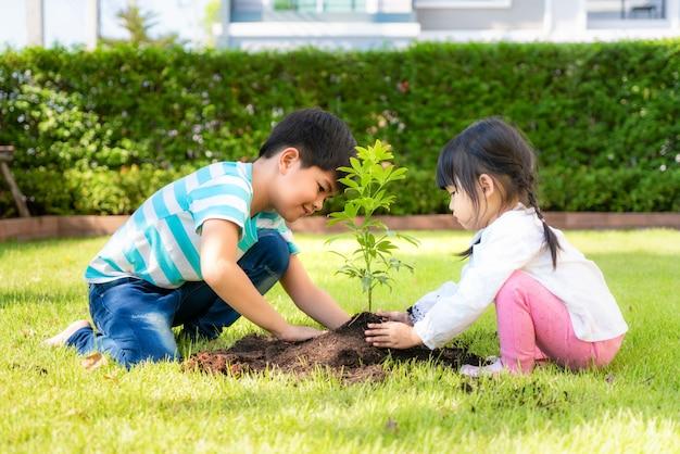 アジアの兄弟の兄と妹が夏の日に家の庭で世界を救うように一緒に黒い土に若い木を植える。植栽の木。