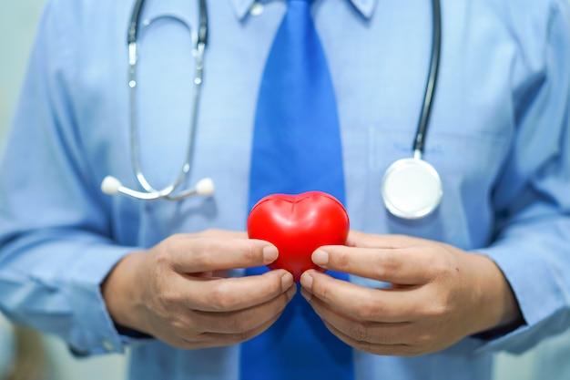 赤い心臓を持っているアジアのスマートな男の医者:健康的な強い医療のコンセプト。