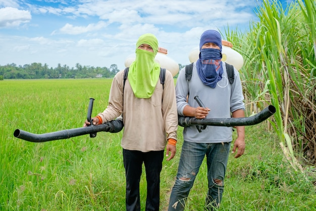 Asian thai farmers to herbicides chemical fertilizers equipment on the fields green rice