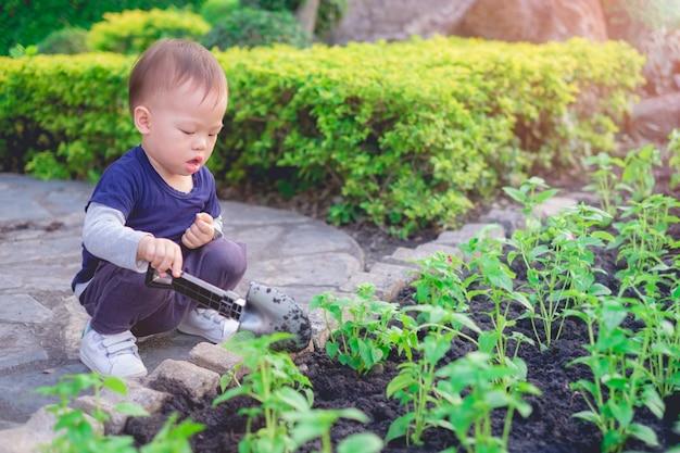 アジアの幼児男の子の緑豊かな庭園の黒い土に若い木を植える