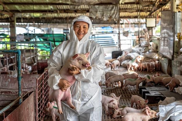 돼지 농장에서 돼지를 움직이는 아시아 수의사 보유