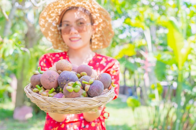 Asian woman agriculturist showing mangosteens in basket