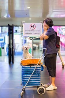 Азиатская женщина и собака со знаком не допускаются домашние животные