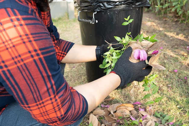 Asian woman clean and collecting bin dry leaves garbage in park