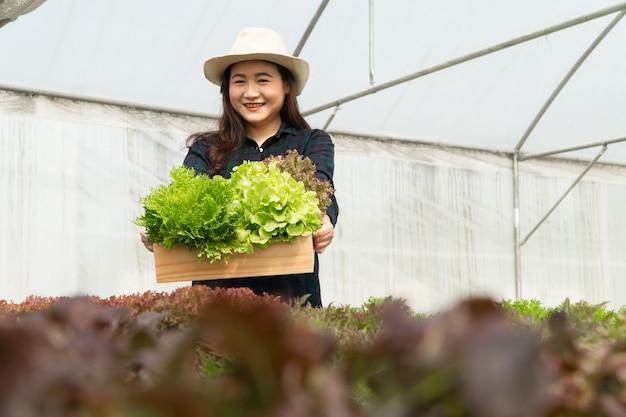아시아 여성 농부들은 온실에 있는 수경 식물 시스템 농장에서 신선한 샐러드 야채를 수확하여 시장에 내 놓습니다. 신선한 야채와 건강 식품의 개념입니다. 비즈니스 및 농업 산업.