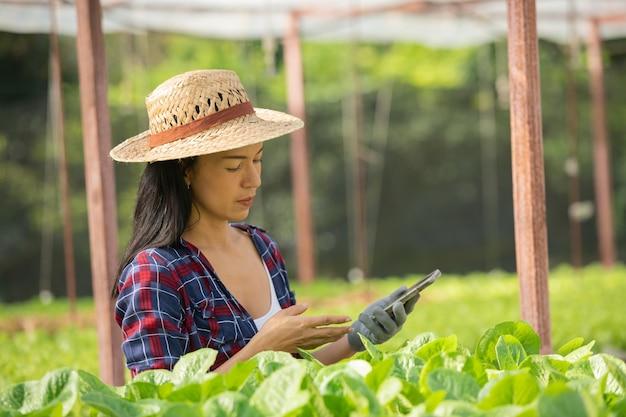 野菜の水耕栽培でモバイルを使って幸せに働くアジアの女性農家。グリーンハウス農場で、グリーンサラダ野菜の品質を笑顔でチェックする女性農家のポートレート。