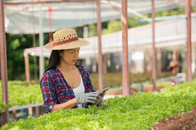 Contadine asiatiche che lavorano utilizzando il cellulare nella fattoria idroponica di verdure con felicità. ritratto di agricoltore che controlla la qualità della verdura di insalata verde con un sorriso nella fattoria della serra.
